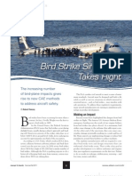 C2R2011 Bird Strike