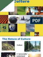Culture 5