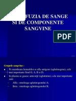 Prezentare - Transfuzia Sg