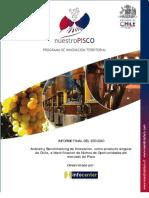 Resumen Ejecutivo Informe Final IC Infocenter