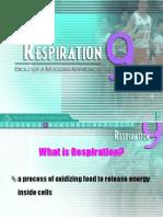 Respiration Aristo