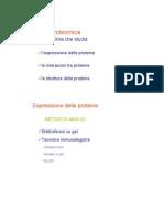 21 - Proteomica