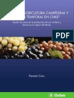 Emp Leo Temporal en Chile