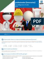 2012-07-09 Folleto Actividad Profesional