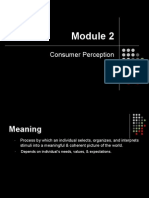 CB - Module 2 - Perception