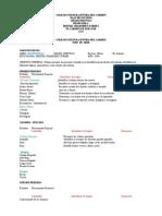 8367871 Plan de Estudios Preescolar