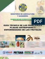2005. IICA. Guía Técnica de Plagas y Enfermedades de Frutales