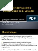 Retos y Perspectivas Biotec ES