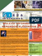 Boletín Informativo_LKVA Ingenieros_Nro. 005