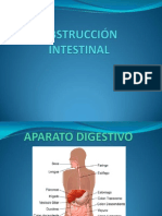 OBSTRUCVCIÓN INTESTINAL PILAR