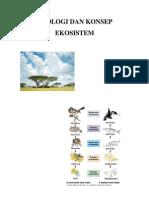 Ekologi Dan Konsep Ekosistem