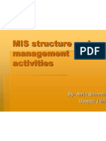 Mis Structure and Management Activities