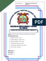 Sistema de Proteccion de Derechos Humanos Interamericano.