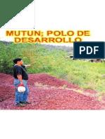 Mutun Polo de Desarrollo517