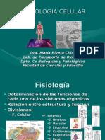 Fisiologia Celular