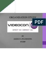 Organisation Study Presentation