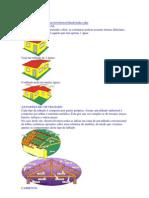 Tipos Do Telhado