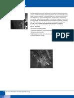 GC Derivatization 2008