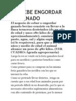 ASÍ DEBE ENGORDAR SU GANADO