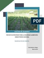 Manual Floricultura Cultivo de Gladiolo