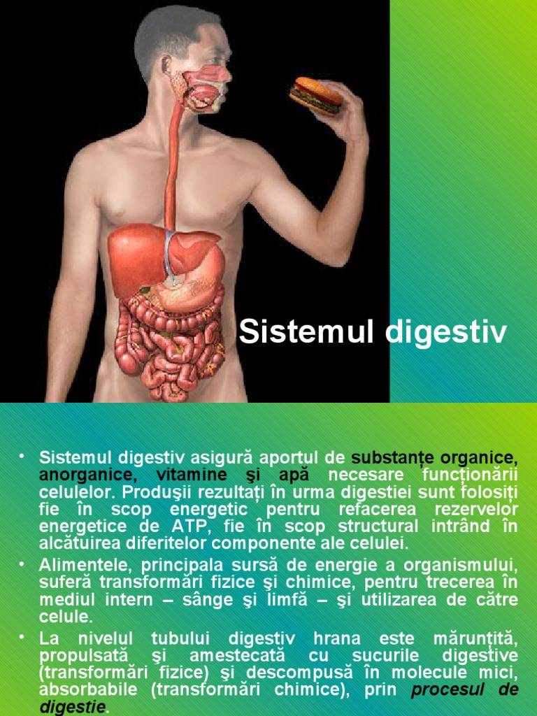 sistemul digestiv pdf)