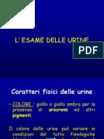 4th Es Urine