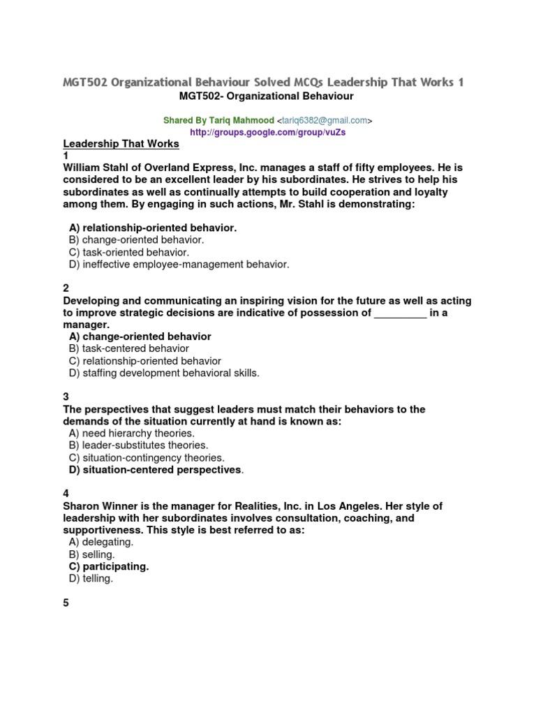 team mentoring definition