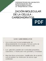 Biologia2 Carboidratos Imp