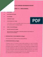 Structure of Summer Internship Report