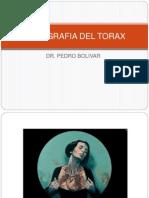 51110562 12 Topografia Del Torax Prof Pedro Bolivar