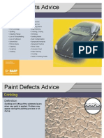 Pictorial- Paint Defects on Car