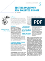 Protecting Your Town From Polluted Runoff