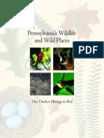 Pennsylvania's Wildlife and Wild Places