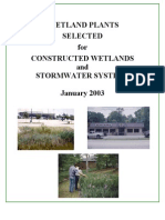 Wetland Plants Selected for Constructed Wetlands and Stormwater Systems