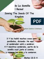 Sembrado La Semilla Del Reino
