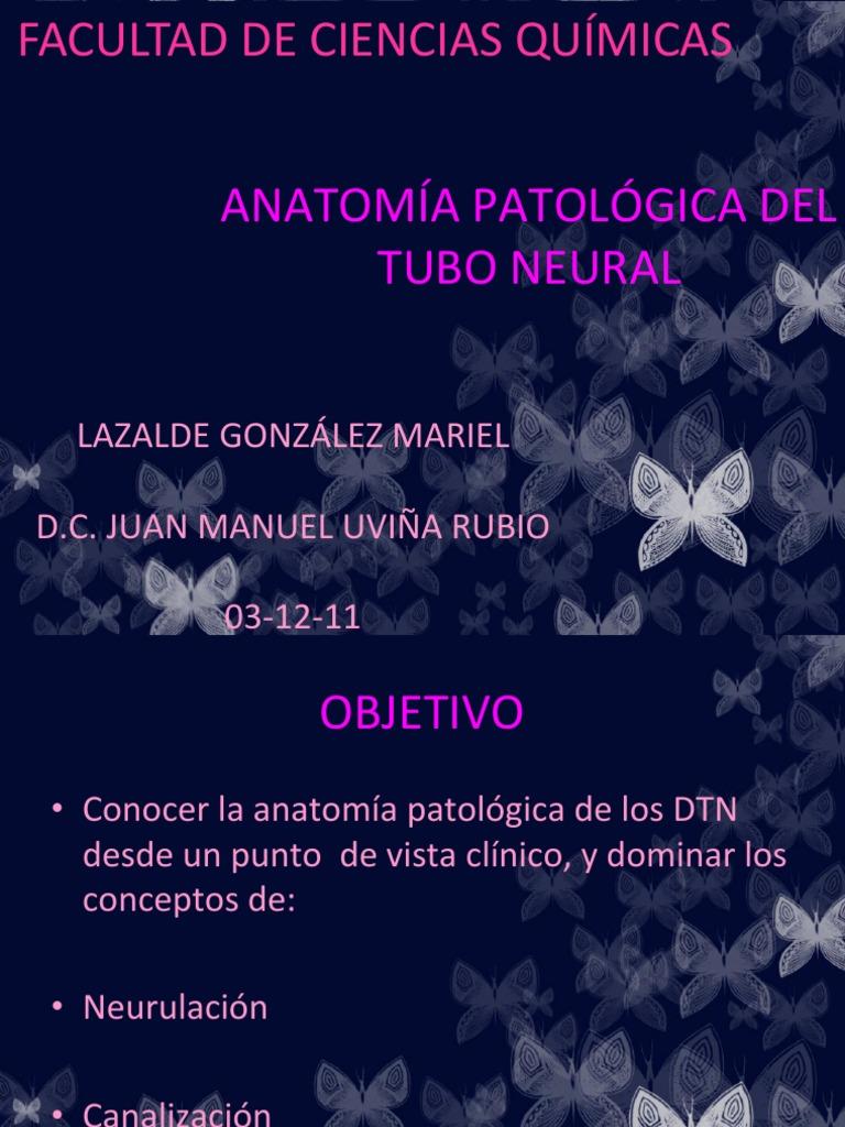 11-LGMariel-ANATOMÍA PATOLÓGICA DEL TUBO NEURAL-C