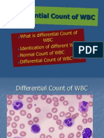 Differential Count of WBC