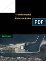 Tsunami Before & After