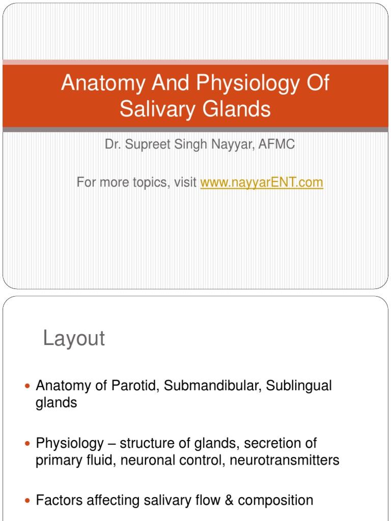 Anatomy and Physiology of Salivary Glands | Saliva | Tongue