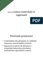 Antrenarea Creativitatii in Organizatii