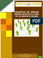 Diagnostico Del Mercado Laboral Relativo a La OMIL (1)