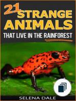 Weird & Wonderful Animals