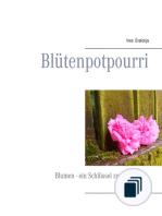 Geschenkbüchlein - Fotografieren
