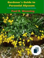 Gardener's Guide to the Full Sun Perennial Flower Garden
