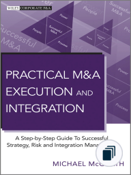 Practical M&A Execution and Integration