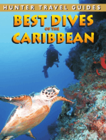 Best Dives Guide to the Caribbean