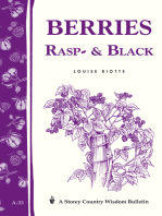 Berries, Rasp- & Black