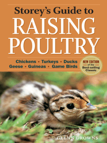 Storey's Guide to Raising Poultry, 4th Edition: Chickens, Turkeys, Ducks, Geese, Guineas, Game Birds