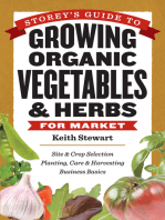 Storey's Guide to Growing Organic Vegetables & Herbs for Market