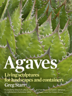 Agaves